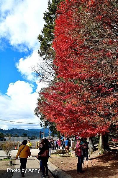 福壽山12