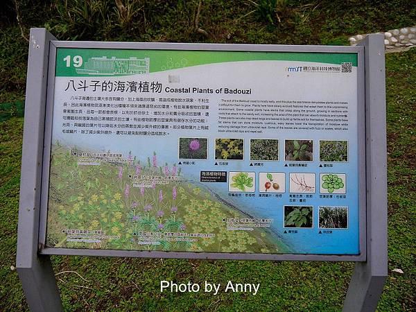 望幽谷5.jpg