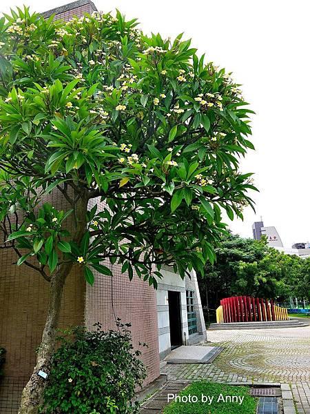 中正公園28.jpg
