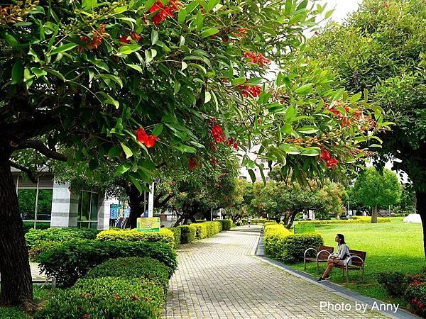 中正公園33.jpg