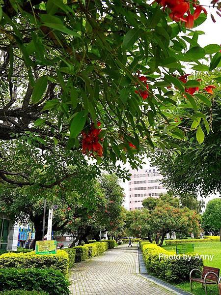 中正公園34.jpg