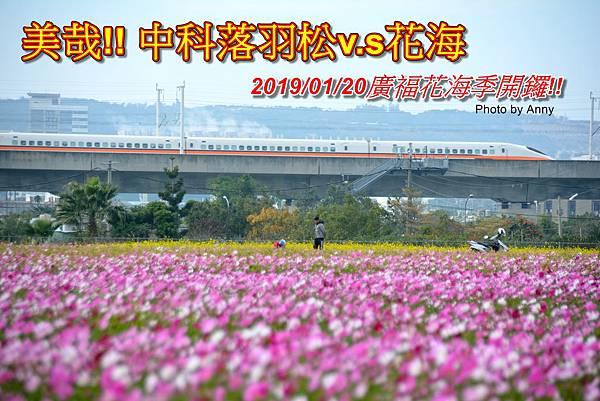 廣福花海a1.jpg
