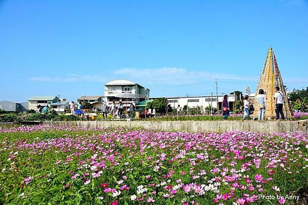 廣福花海13.jpg