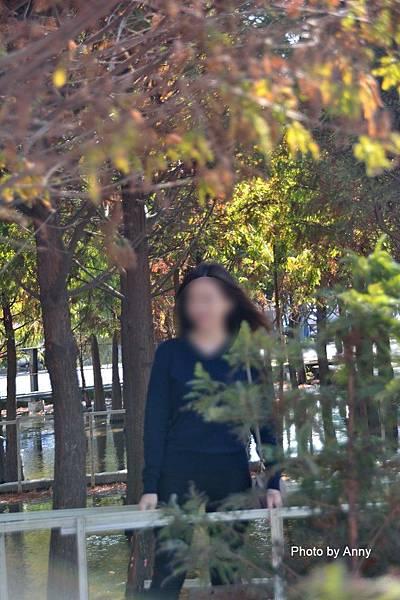 廣福花海24.jpg