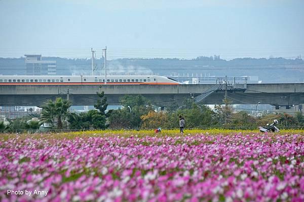 廣福花海90.jpg
