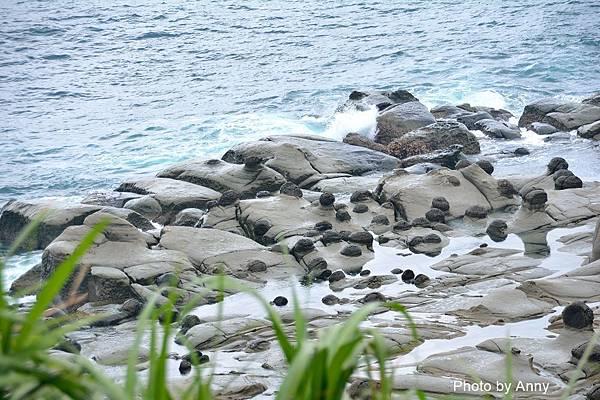 和平島39.jpg