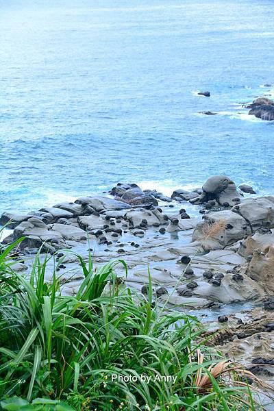 和平島38.jpg