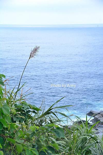 和平島37.jpg
