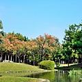 舊社公園4.jpg