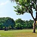 舊社公園9.jpg