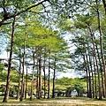 舊社公園12.jpg