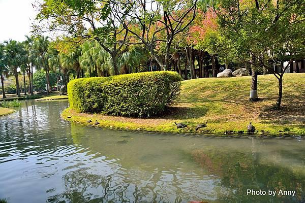 舊社公園14.jpg