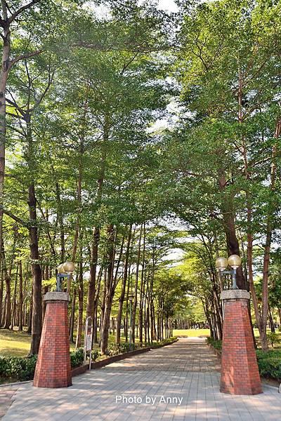 舊社公園24.jpg