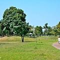 米奇樹14.jpg