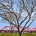 西螺大橋68.jpg