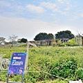 西螺大橋67.jpg