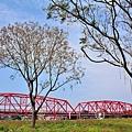 西螺大橋69.jpg