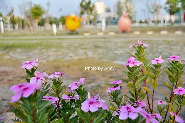 中央公園54.jpg