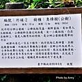 桐花步道6-1.jpg