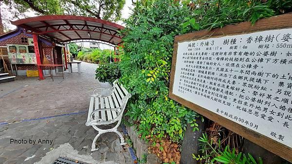 桐花步道7.jpg