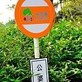 桐花步道14.jpg