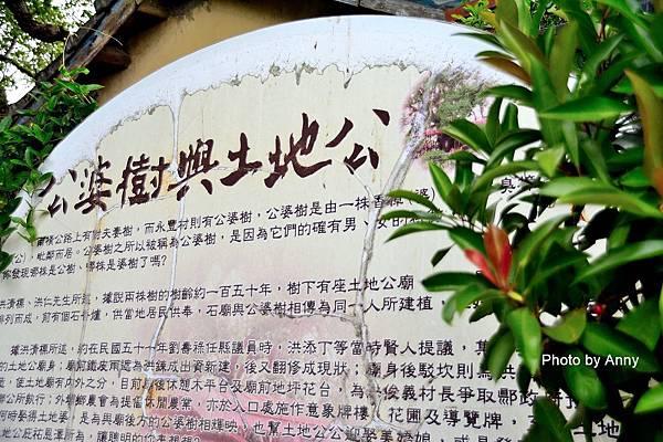 桐花步道16.jpg