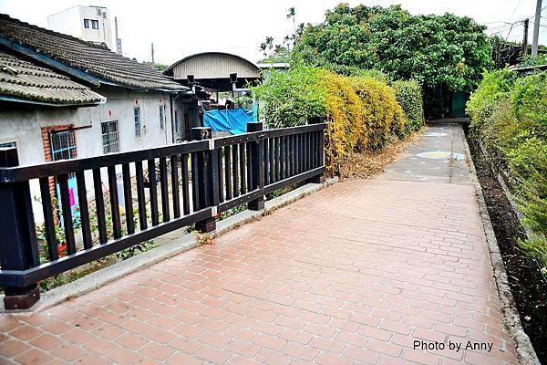 桐花步道15.jpg