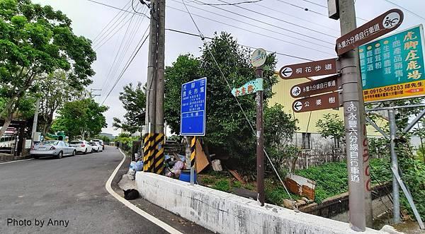桐花步道23.jpg