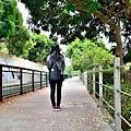 桐花步道34.jpg