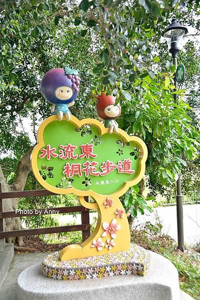 桐花步道39.jpg
