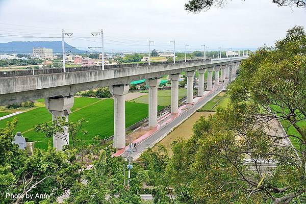 桐花步道69.jpg