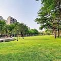 豐富公園10.jpg