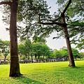 豐富公園14.jpg