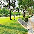 豐富公園11.jpg