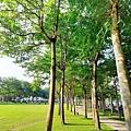 豐富公園18.jpg