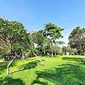 豐富公園29.jpg