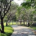 豐富公園44.jpg