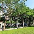 豐富公園49.jpg