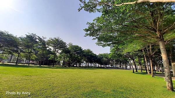 豐富公園48.jpg