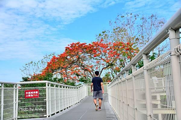 掛山步道10.jpg