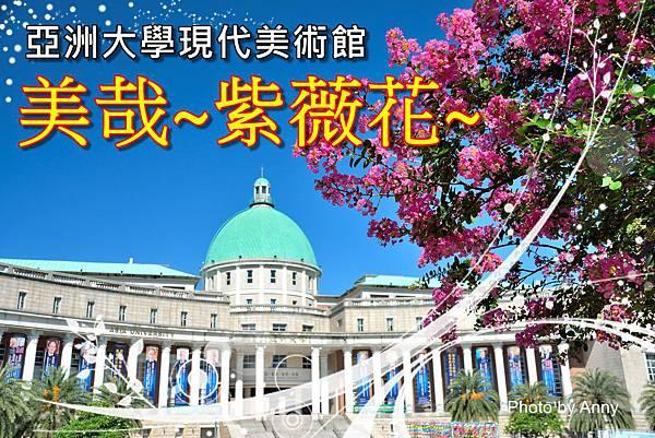 亞大紫薇a1.jpg