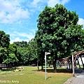 水交社公園2.jpg