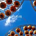 金漢31.jpg