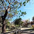 十甲公園28.jpg