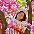 十甲公園36.jpg