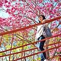 十甲公園39.jpg