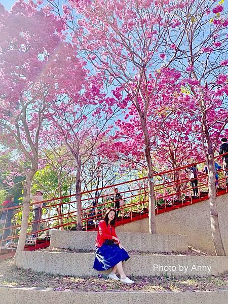 十甲公園52.jpg