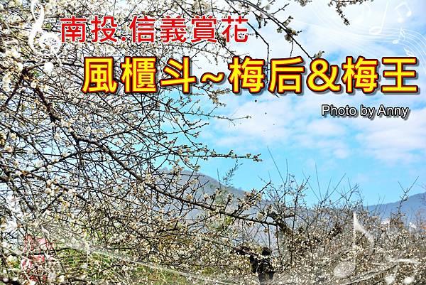 賞梅a1.jpg