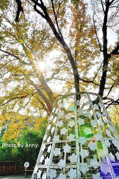 樹屋楓樹23.jpg
