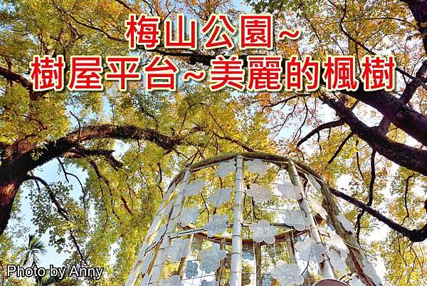 樹屋楓樹a1.jpg
